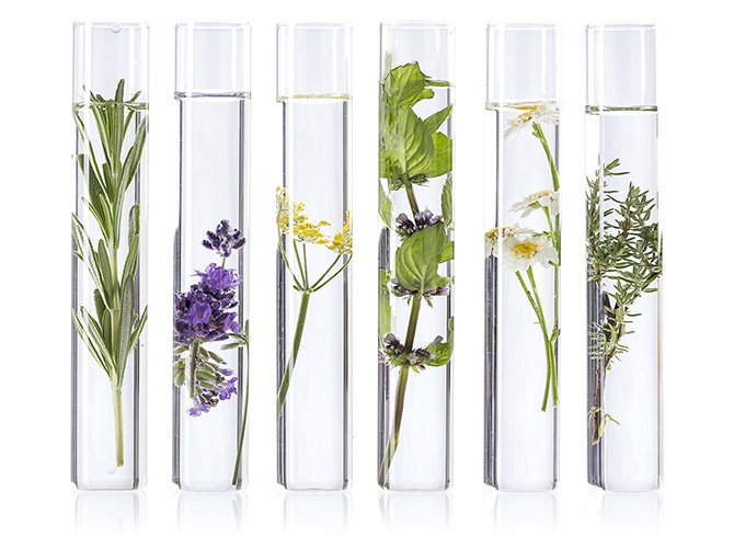 We continuously draw inspiration from nature. We make use of the endless healing and conditioning properties of plants. We combine the love of nature with the latest scientific research to create unique solutions. Therefore the formulas of our products guarantee both effectiveness and safety.